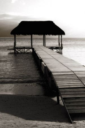 1558 Sepia jetty.jpg