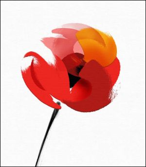 2235 Abstract poppy.jpg